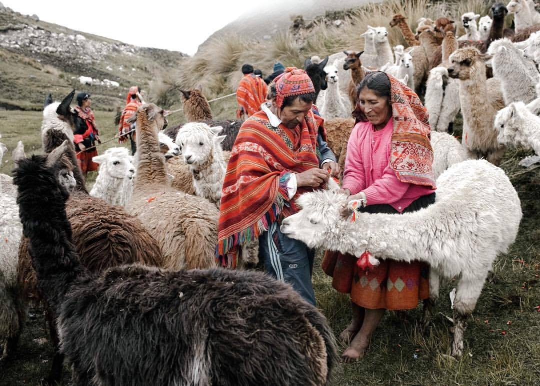 Threads of Peru purchases textiles from women's weaving cooperatives in remote Andean villages. They pay the women for their work up-front and at a fair market price.